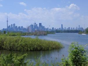 Фото: pixabay На фото: В выходные в Онтарио будет очень жарко