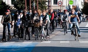Фото: Wikimedia Commons На фото: В 2019 году в Монреале не произошло ни одного смертельного случая с участием велосипедистов