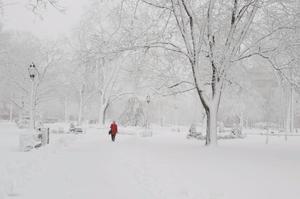 Фото: Instagram На фото: В южной части Онтарио снег пойдет на следующей неделе
