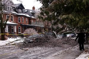 Фото: Wikimedia Commons На фото: Городские власти Торонто направят несколько бригад в Виннипег (Манитоба), чтобы помочь городу справиться с последствиями шторма