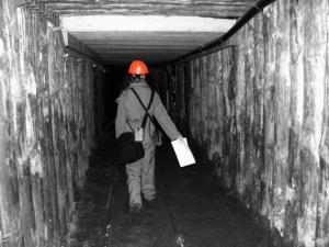 Фото: pixabay.com На фото: Самый большой штраф был наложен на Kameron Coal Management Ltd. – $54,000