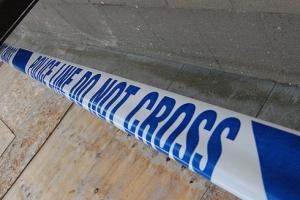 Фото: flickr.com На фото: Двое подростков ограбили семью в Aloma Park