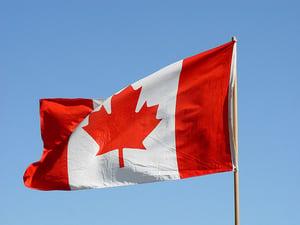 Фото: flickr.com На фото: На сайте правительства можно заказать разнообразные флаги, постеры и не только